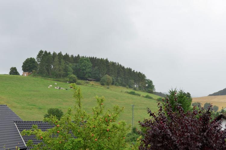 Holiday homeGermany - Sauerland: Ferienwohnung II Diemelsee  [3]