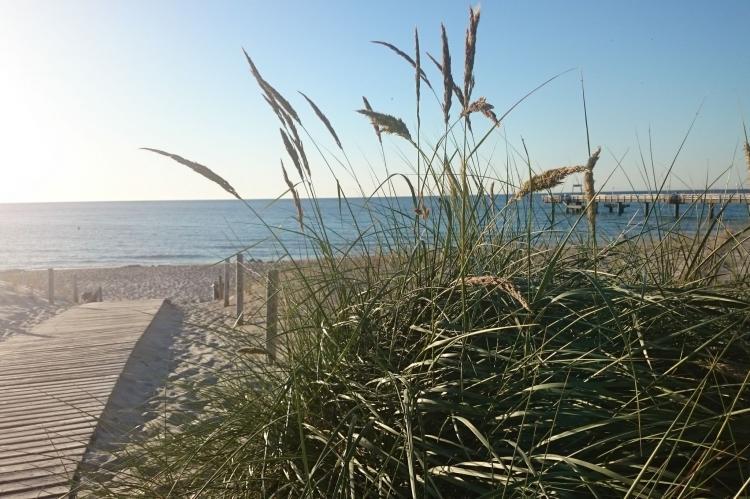 Holiday homeGermany - Mecklenburg-Pomerania: Landgut Detershagen - Wohnung I im EG  [24]