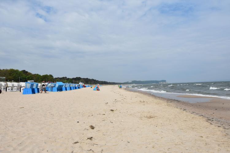 Holiday homeGermany - Mecklenburg-Pomerania: Die hundefreundliche Wohnung Schwan  [23]