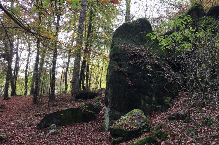 Holiday homeGermany - Hesse: Wanderfreund  [35]