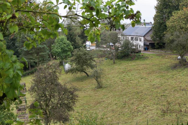 Holiday homeGermany - Eifel: Blick zu Luxemburg  [14]