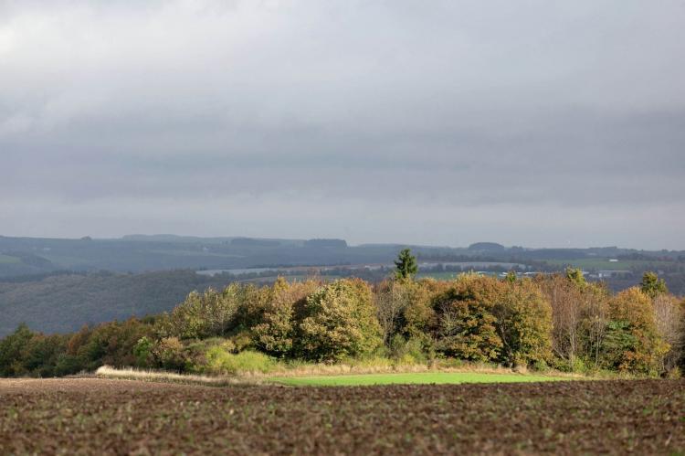 Holiday homeGermany - Eifel: Blick zu Luxemburg  [17]