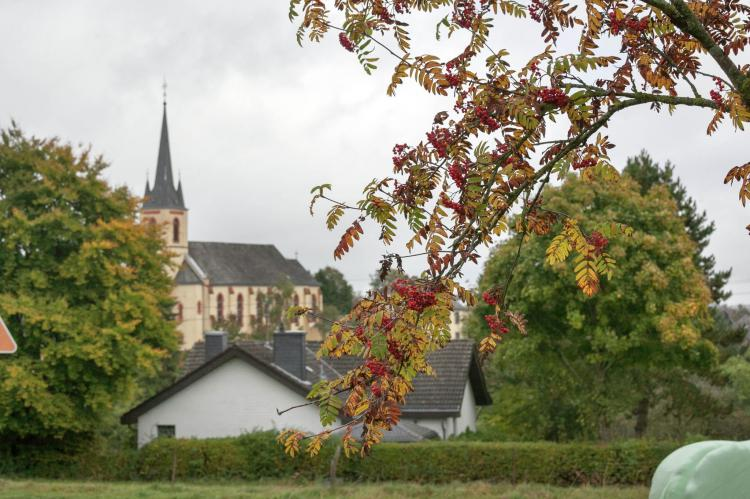 Holiday homeGermany - Eifel: Blick zu Luxemburg  [19]