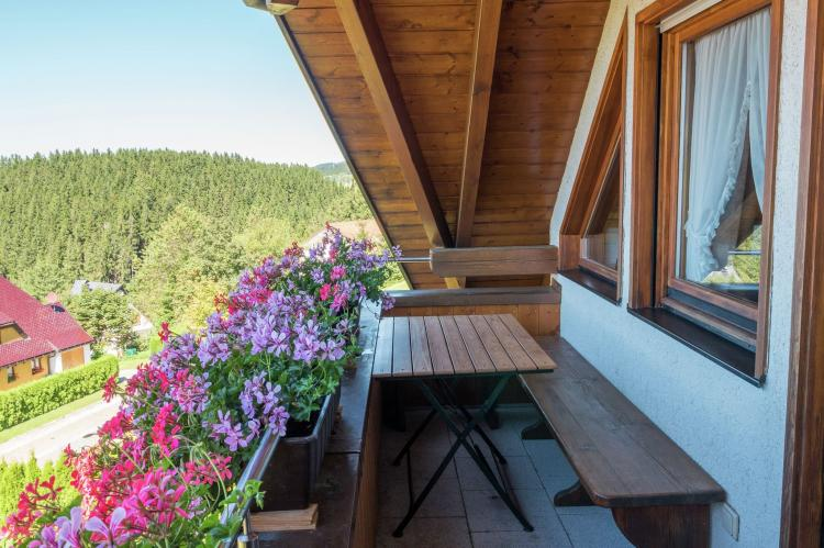 Holiday homeGermany - Black Forest: Neukirch  [22]