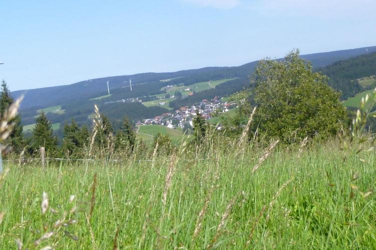 Holiday homeGermany - Black Forest: Neukirch  [31]