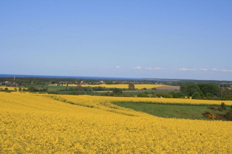 Holiday homeGermany - Mecklenburg-Pomerania: Am Meer Nr 7 im OG  [33]