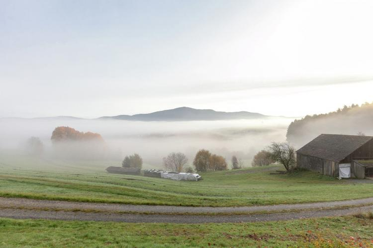 VakantiehuisDuitsland - Beieren: Bayerischer Wald  [28]
