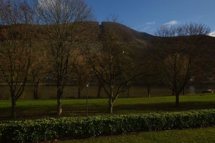 VakantiehuisDuitsland - Rheinland-Pfalz: Ferienwohnung Moselgarten  [24]