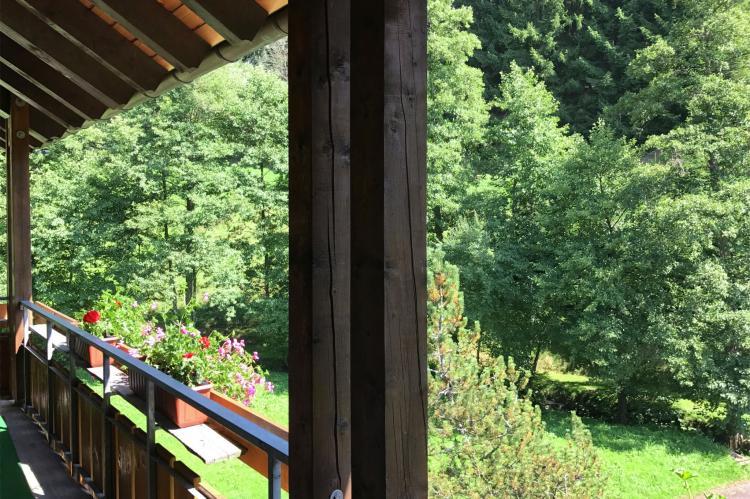 VakantiehuisDuitsland - Zwarte woud: Fahrner  [12]