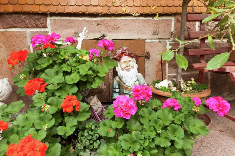 Holiday homeGermany - Black Forest: Fahrner  [25]