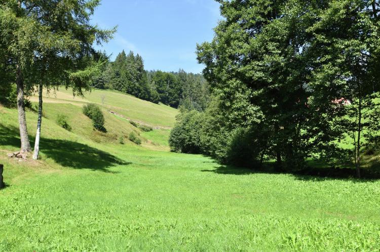 VakantiehuisDuitsland - Zwarte woud: Fahrner  [16]