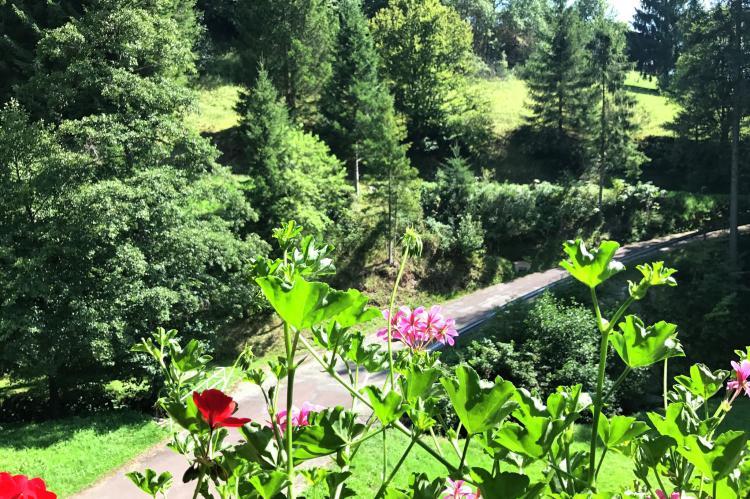 VakantiehuisDuitsland - Zwarte woud: Fahrner  [17]