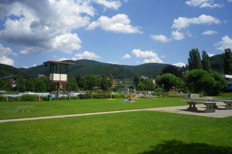 VakantiehuisDuitsland - Baden-Württemberg: Feriendorf Waldbrunn 2  [25]