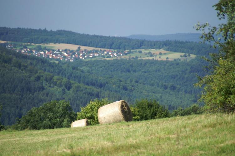 VakantiehuisDuitsland - Baden-Württemberg: Feriendorf Waldbrunn 2  [26]