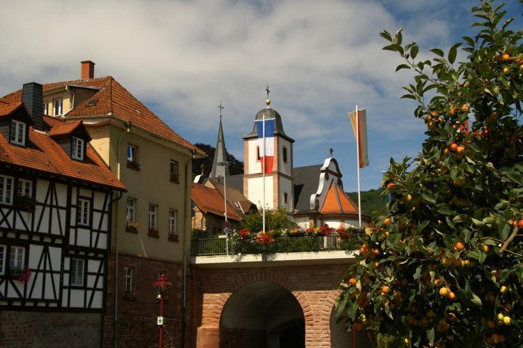 VakantiehuisDuitsland - Baden-Württemberg: Feriendorf Waldbrunn 1  [32]