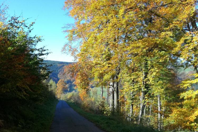 Holiday homeGermany - Sauerland: Im Hochsauerland  [10]