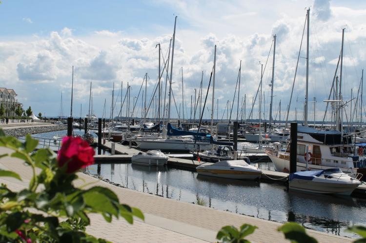 Holiday homeGermany - Mecklenburg-Pomerania: Ferienwohnung Hecht  [23]
