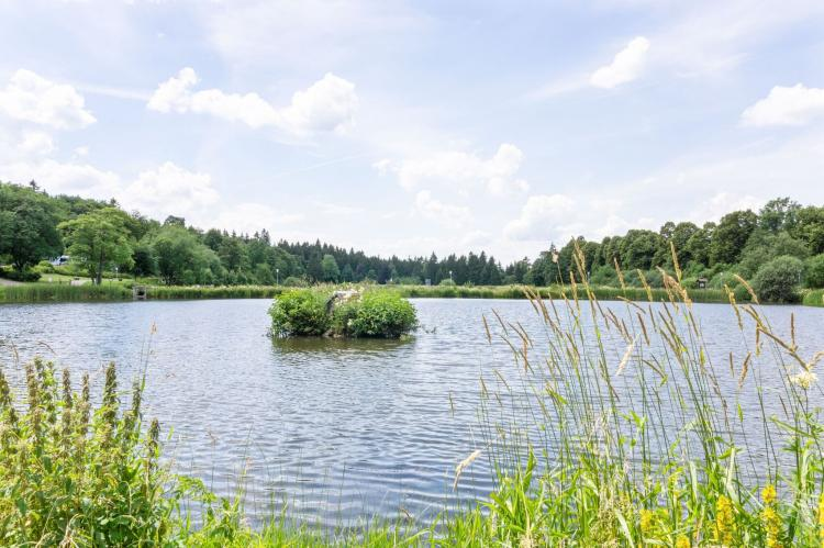 Holiday homeGermany - Harz: Hahnenklee 610 - Bergseite  [29]