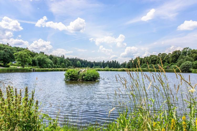 Holiday homeGermany - Harz: Hahnenklee 611 - Bergseite  [36]