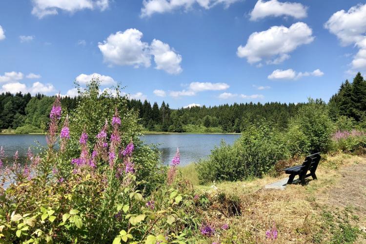 Holiday homeGermany - Harz: Ferienpark am Waldsee 1 - Haustierfrei  [35]