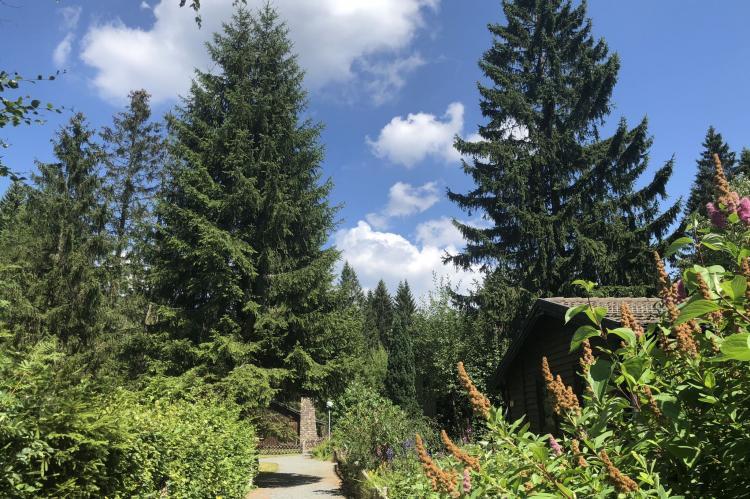 Holiday homeGermany - Harz: Ferienpark am Waldsee 1 - Haustierfrei  [30]