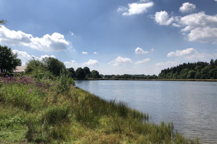 Holiday homeGermany - Harz: Ferienpark am Waldsee 1 - Haustierfrei  [32]