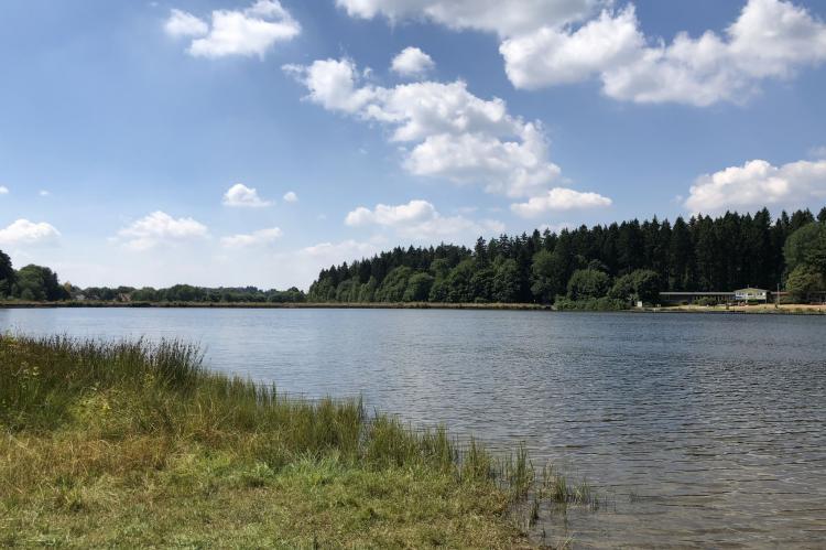 Holiday homeGermany - Harz: Ferienpark am Waldsee 1 - Haustierfrei  [33]