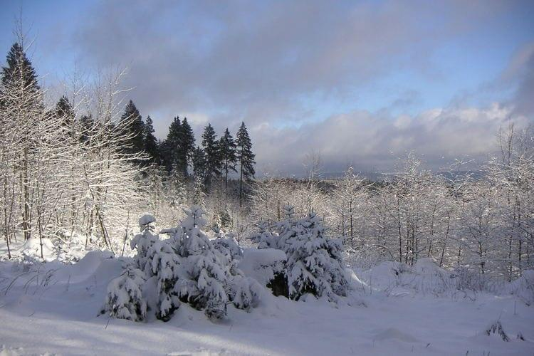 Holiday homeGermany - Harz: Ferienpark am Waldsee 1 - Haustierfrei  [37]