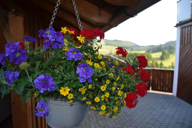 Holiday homeGermany - Sauerland: Freiblick  [20]
