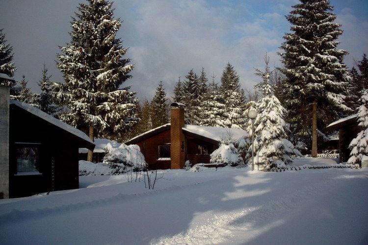 VakantiehuisDuitsland - Harz: Ferienpark am Waldsee 2  [13]