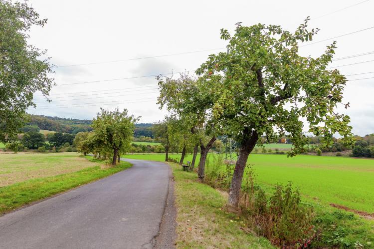 Holiday homeGermany - Hesse: Im Kellerwald  [32]