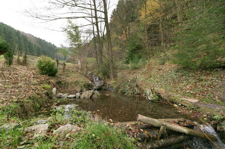 Holiday homeGermany - Sauerland: Am Naturpark  [30]