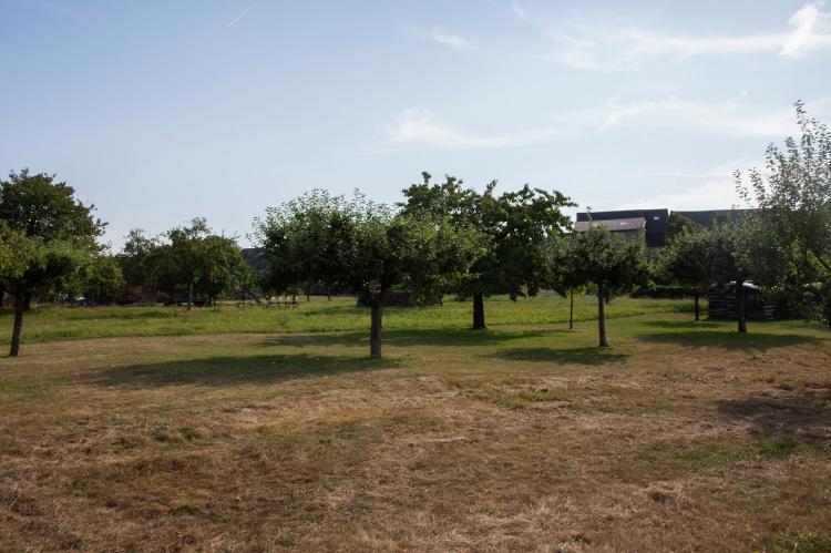 VakantiehuisDuitsland - Rheinland-Pfalz: Ferienhaus Irmgard  [31]