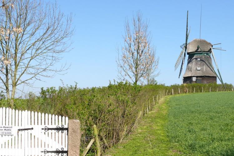 VakantiehuisDuitsland - Sleeswijk-Holstein: Ostsee  [5]
