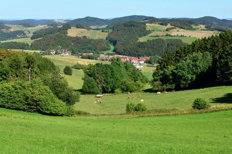 FerienhausDeutschland - Sauerland: Willingen  [27]