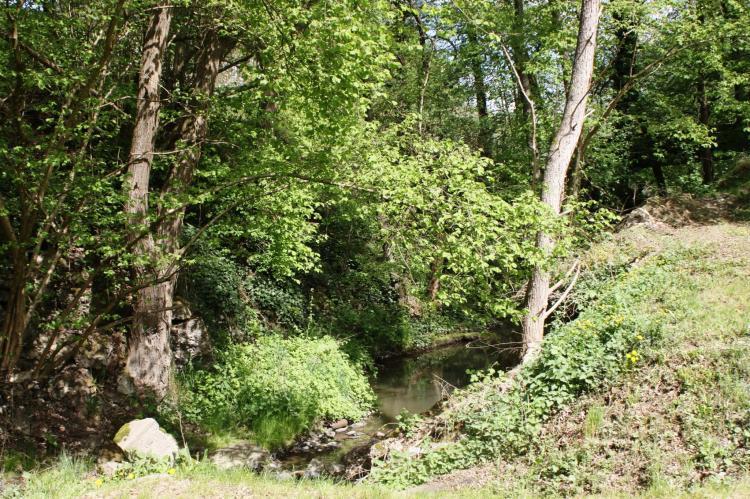 VakantiehuisDuitsland - Rheinland-Pfalz: Alte Mühle  [20]