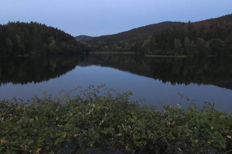 VakantiehuisDuitsland - Harz: Fuchsbau  [16]