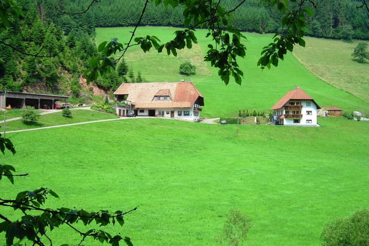 Holiday homeGermany - Black Forest: Salmensbach  [2]