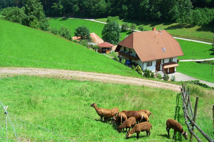 Holiday homeGermany - Black Forest: Salmensbach  [13]