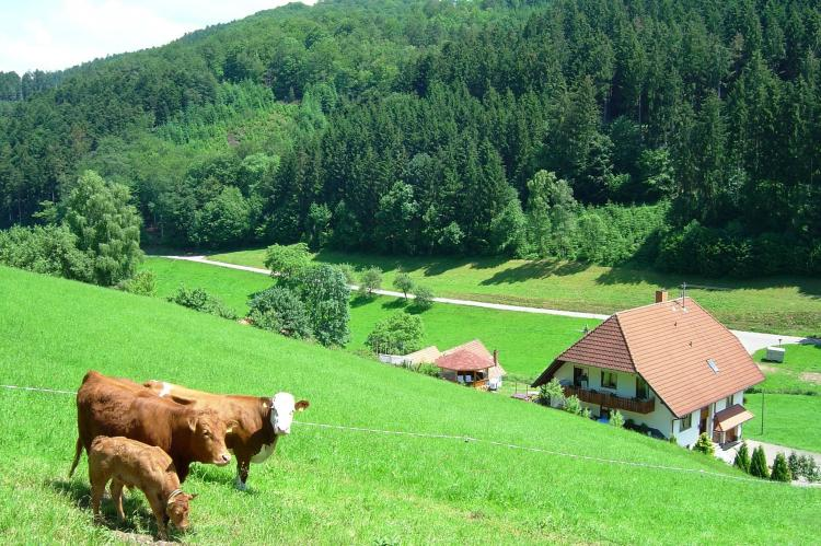 Holiday homeGermany - Black Forest: Salmensbach  [1]
