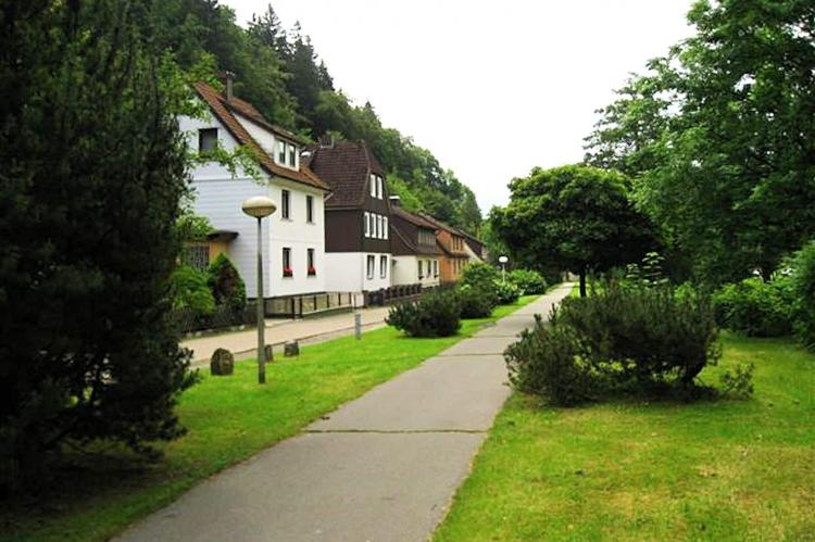 Holiday homeGermany - Harz: Im Zorger Tal  [23]