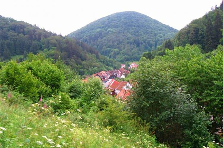 Holiday homeGermany - Harz: Im Zorger Tal  [25]
