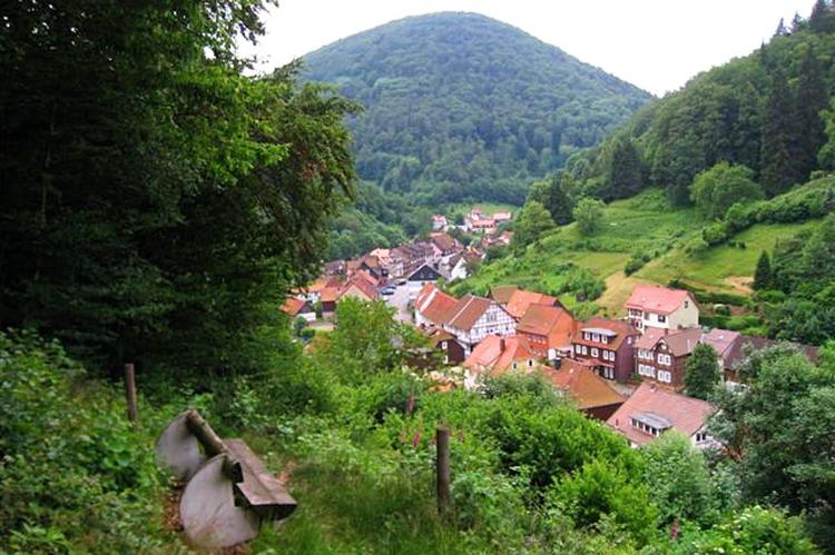 Holiday homeGermany - Harz: Im Zorger Tal  [26]