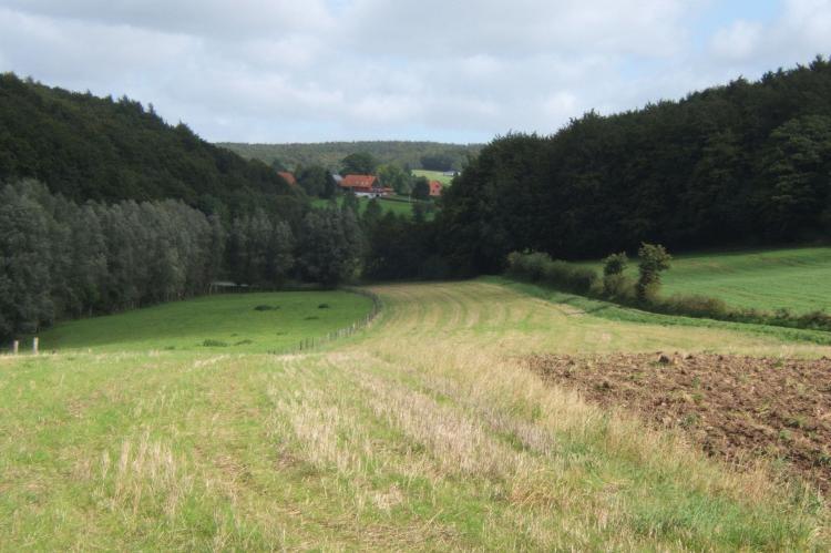 Holiday homeGermany - Weserbergland: Eichhörnchen III  [37]