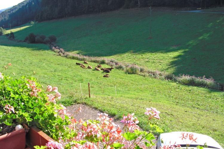 VakantiehuisDuitsland - Zwarte woud: Am Stulzenhof  [13]