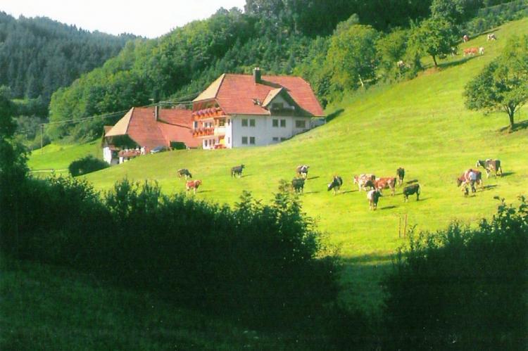 VakantiehuisDuitsland - Zwarte woud: Am Stulzenhof  [2]