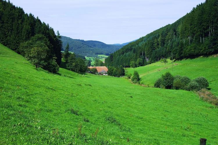 VakantiehuisDuitsland - Zwarte woud: Am Stulzenhof  [14]
