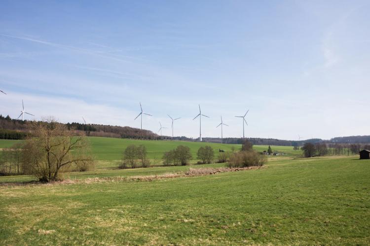 VakantiehuisDuitsland - Rheinland-Pfalz: Fewo mit Herz  [26]