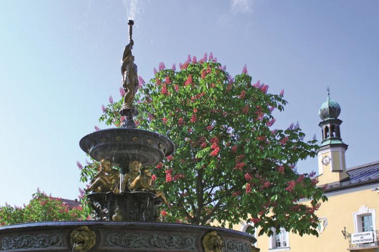 VakantiehuisDuitsland - Beieren: Ferienhaus Wiesing  [30]