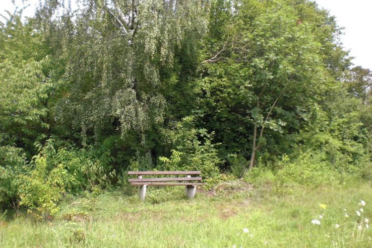 Holiday homeGermany - Hesse: Im Knüllgebirge  [26]